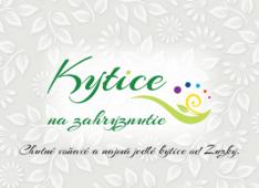 Katalóg Kytice na zahryznutie